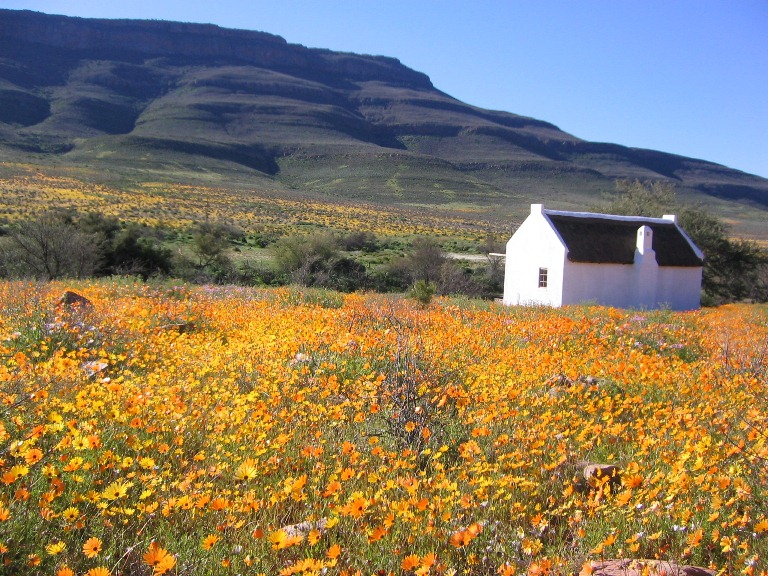 Image result for The Cederberg